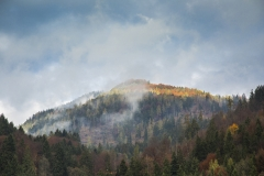 Herbstlicht am Wildbarren- ©Ralph Sturm
