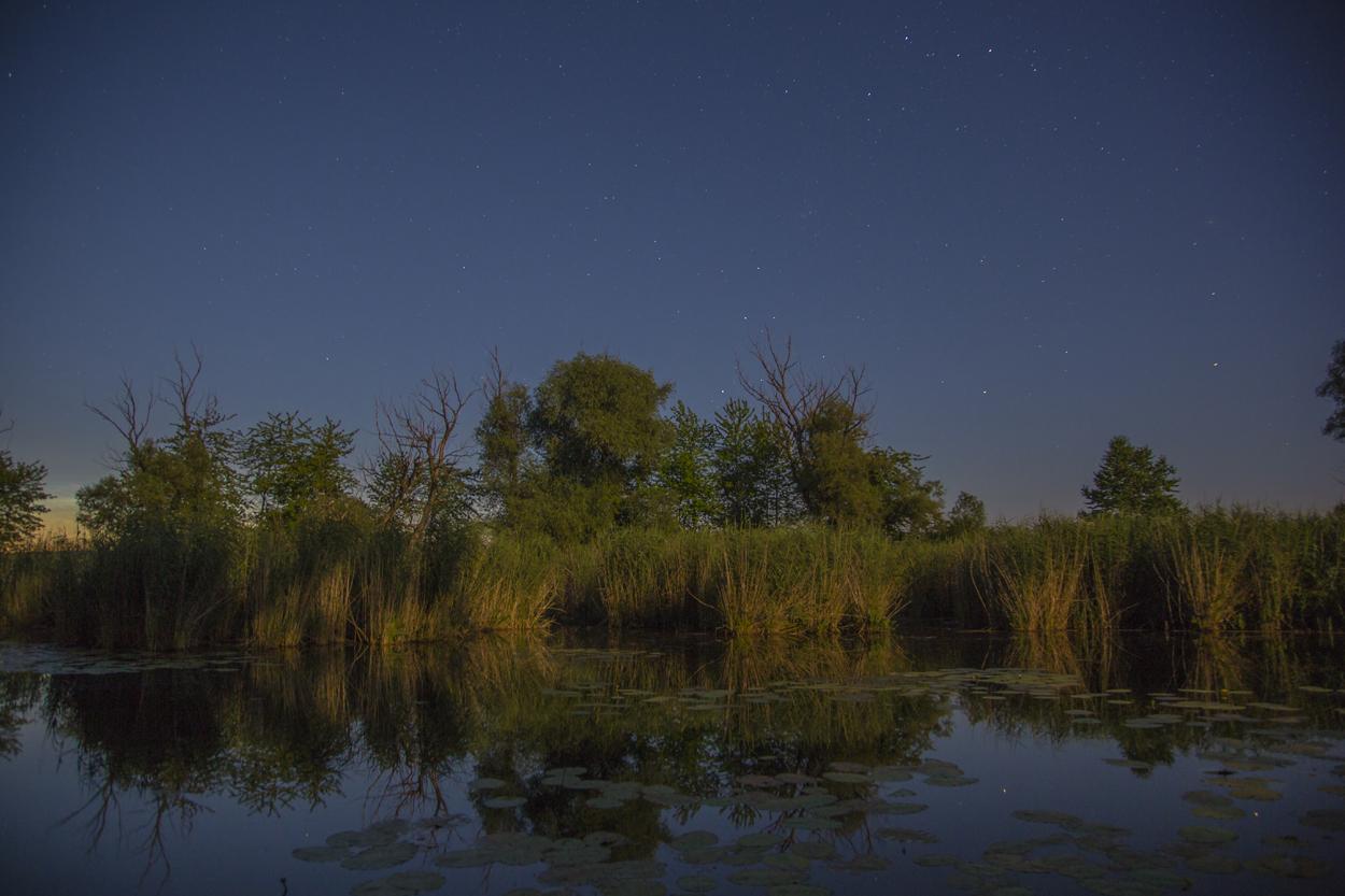 Weiher bei Nacht - ©Ralph Sturm